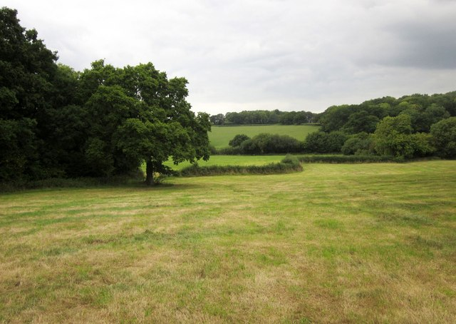 Fields by West Wood
