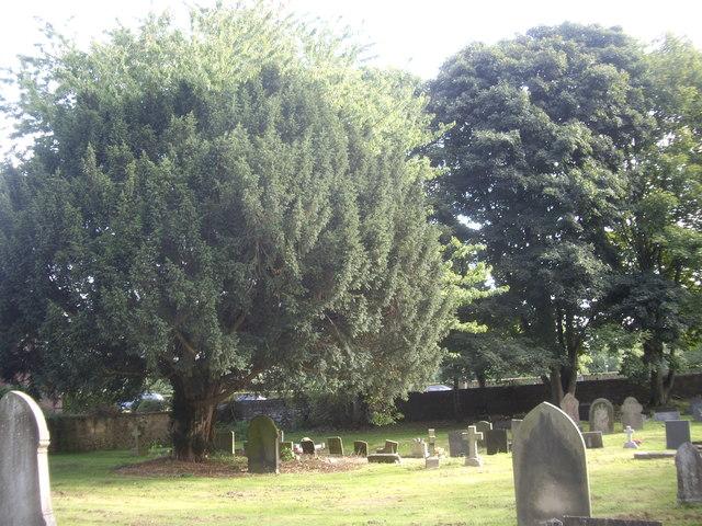 A corner of St Cuthbert's graveyard.