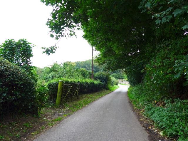 Rush hour in Gatcombe