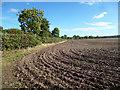 SU6993 : Ploughed Corner by Des Blenkinsopp