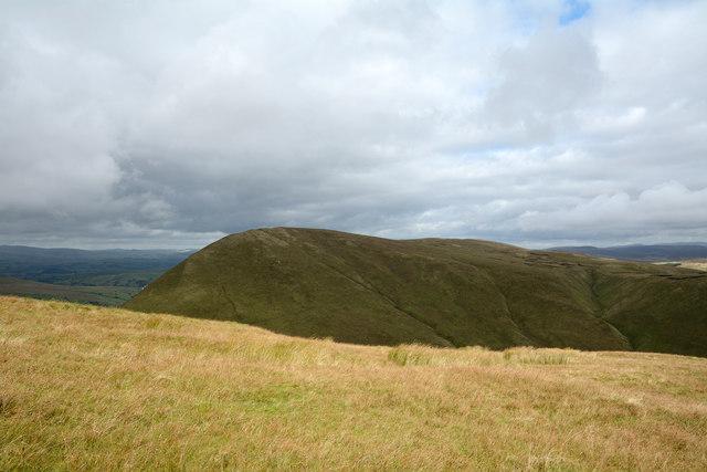 Grass of east ridge of Foel Hafod-fynydd
