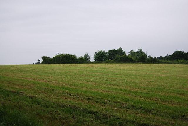 Farmland by Forest Way