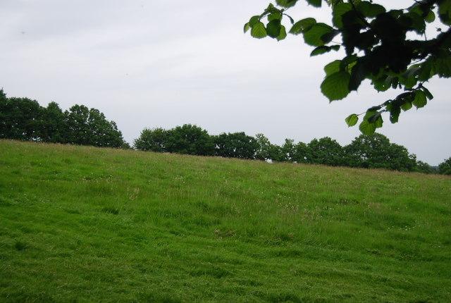 Farmland, Horseshoe Farm