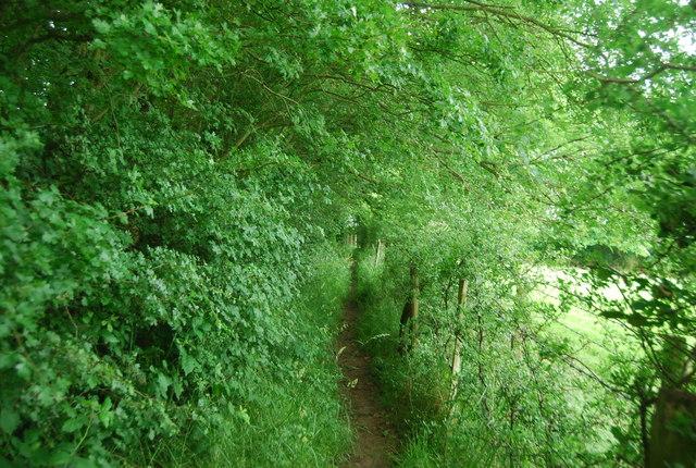 Footpath to Brambletye