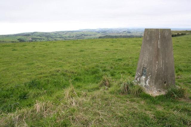 Trig point on Eggardon Hill