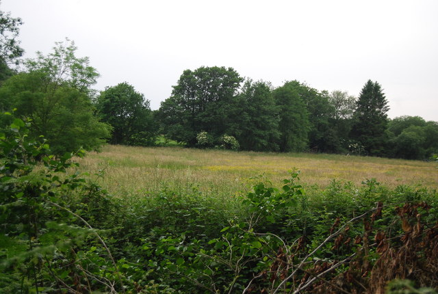 In the Medway Valley