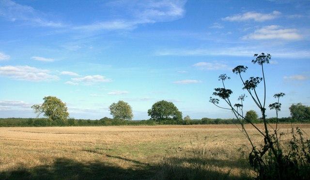Hilltop Farmland