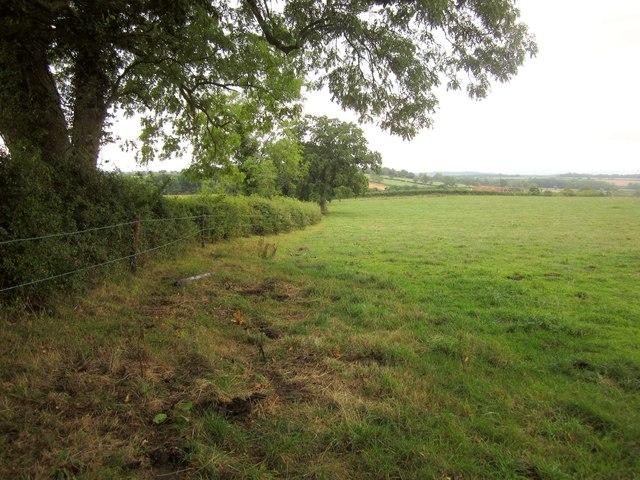 Field near Stowell
