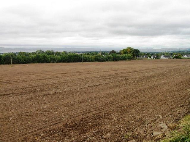 Field near Liff