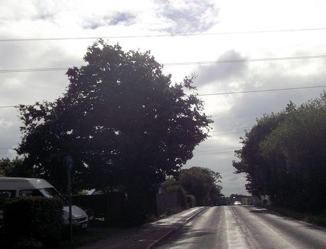 Power lines crossing Hambledon Road at Soake