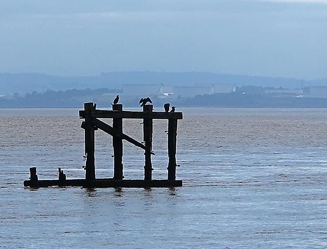 Mersey estuary by Eastham Locks