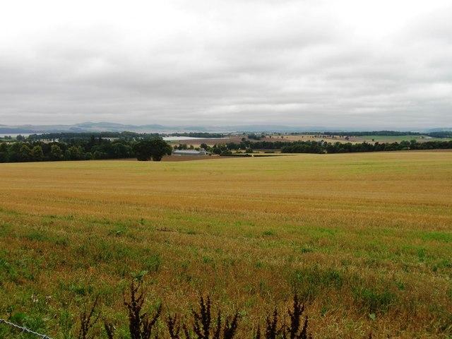 Fields near Liff