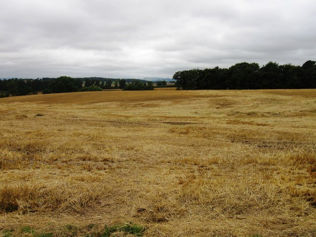 Field, Mains of Gray