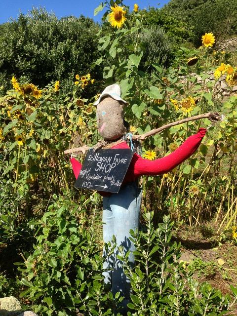An advertising scarecrow