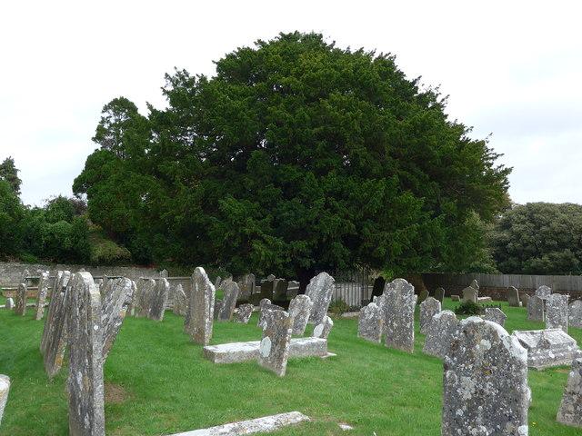 St Mary, Carisbrooke: churchyard (j)