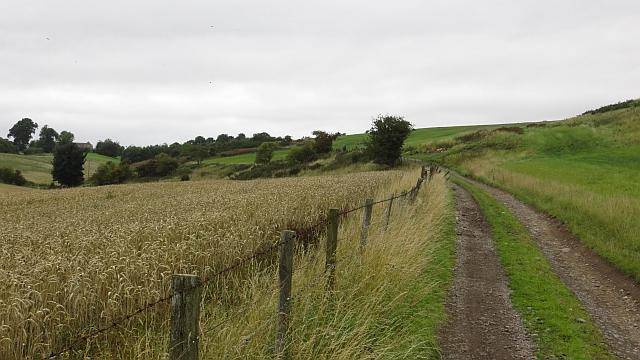 Dunbog to Monimail road