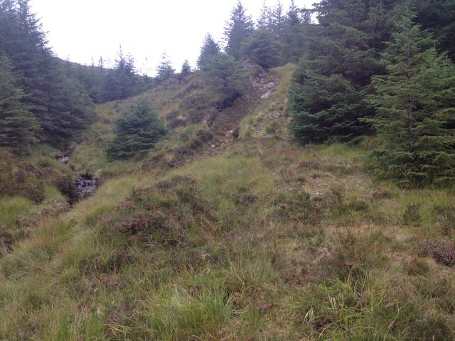 Rough forestry track in Glenhurich Forest