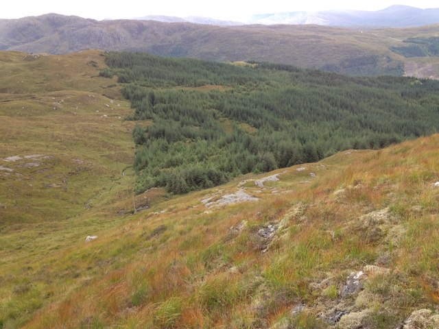 Above Glenhurich forest
