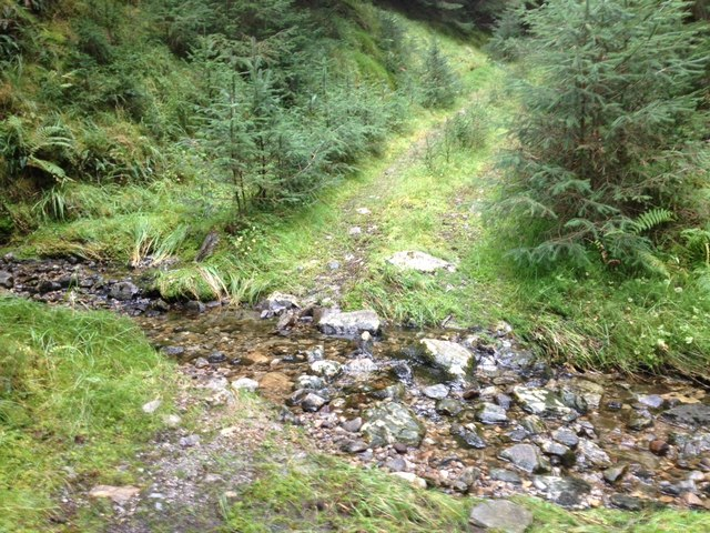 Ford on a forestry track in Glenhurich Forest