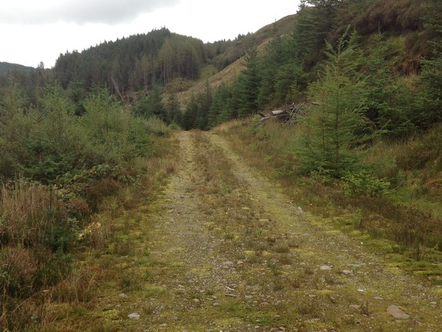 Forestry road in Glenhurich Forest