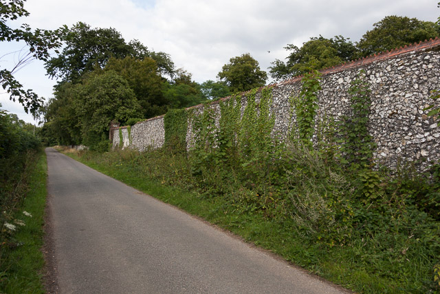 Tall flint wall protecting Hinton Daubnay House