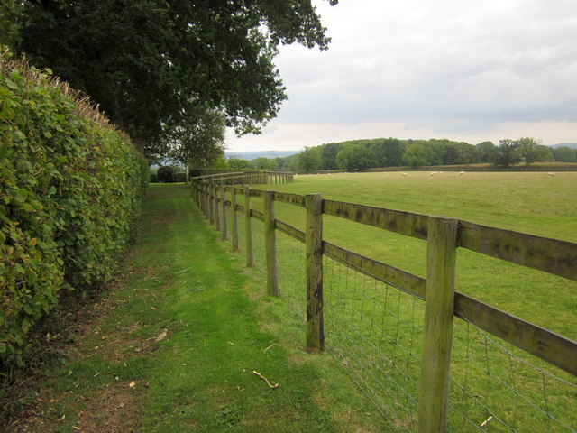Fence, Stowell Hill
