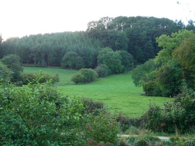 Woodland and farmland, east of Pen-y-park