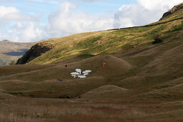 National Trust Logo on Seatoller Fell