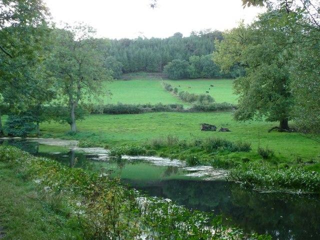 Field boundary, west of Ty-poeth farm