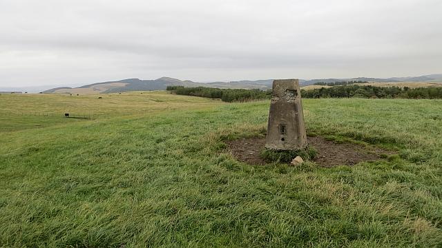 Summit of Dunbog Hill