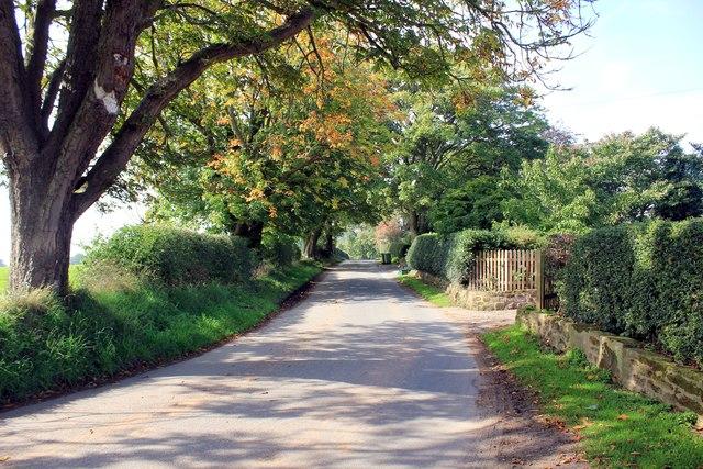 Tirley Lane at Summertrees
