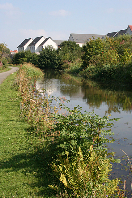 Houses by the Canal