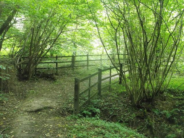 Footpath to Bryant's Farm