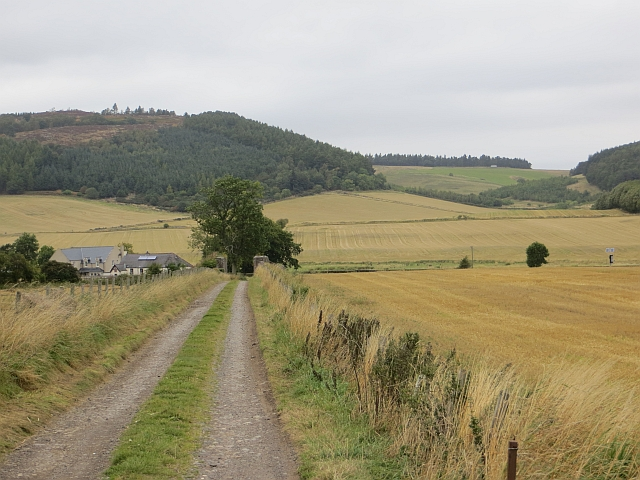 Road to Johnstone