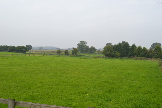 Pasture land near Littleton Colliery