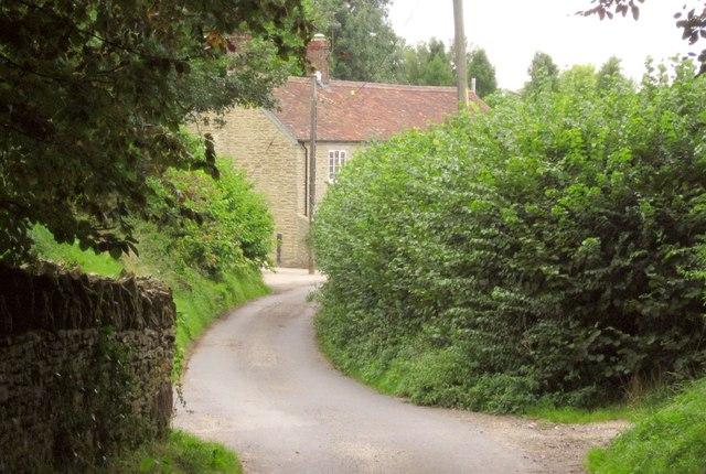 Cabbage Lane
