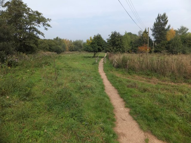 Footpath on bank of River Exe