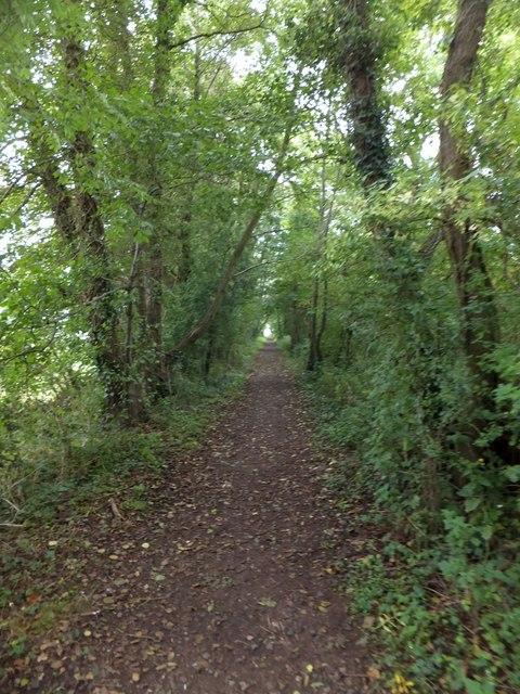 Footpath along former railway line