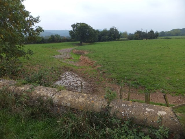Stream near Stoke Canon