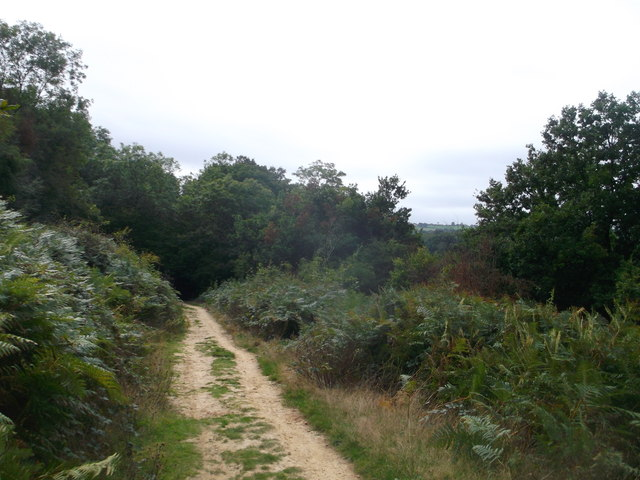 Round reservoir Route near Greenwoods Wood