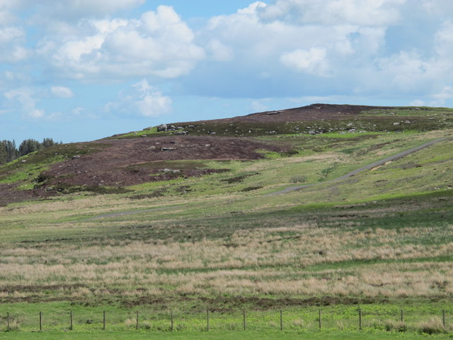 Black Hill viewed from South Yardhope