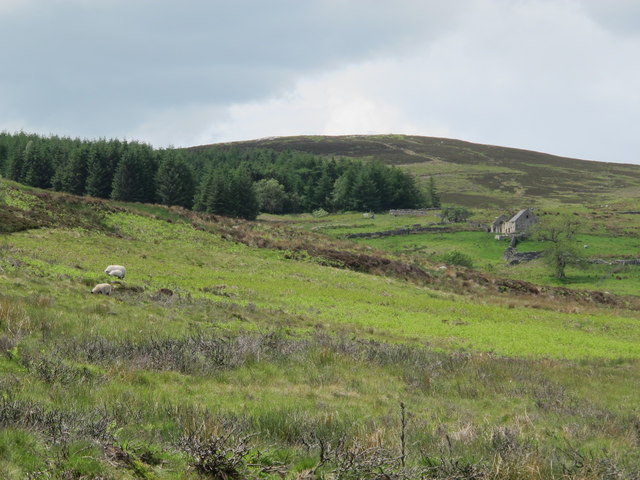 Rough pastures, moorland and plantations around South Yardhope