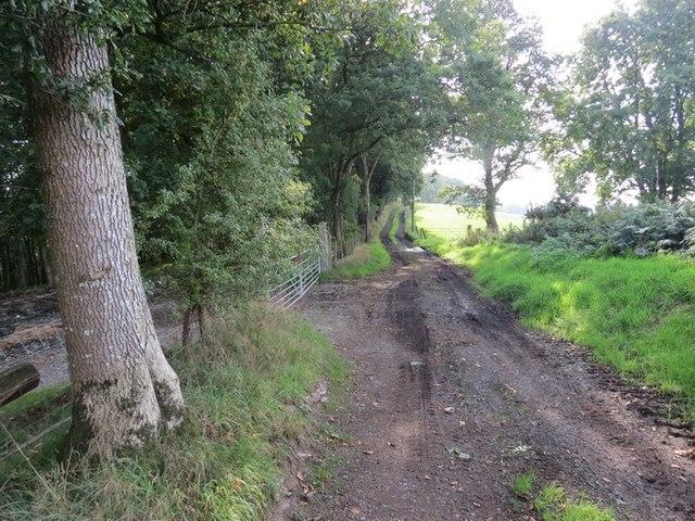 Hen Heol Ffarm Cwmbran Old Farm Road