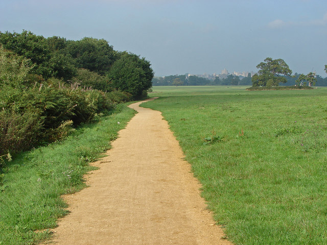 Cycle path, Windsor Great Park