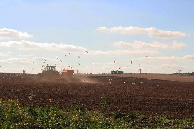 Windfarms galore: Cherry Burton Wold