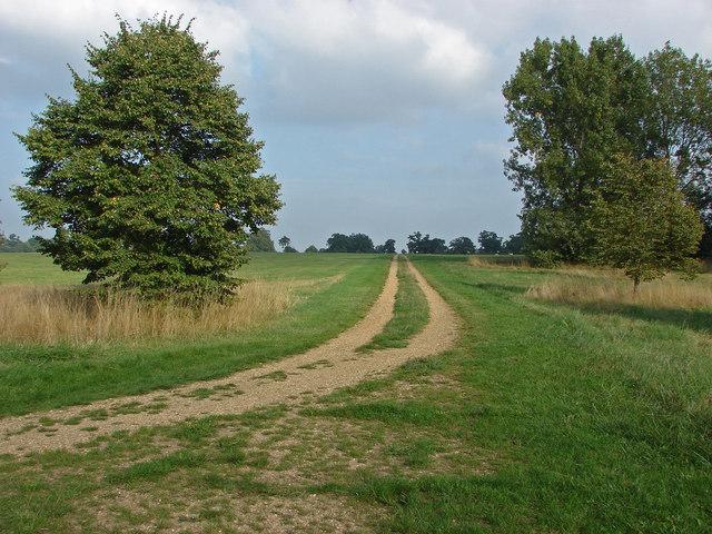 Cavalry exercise ground