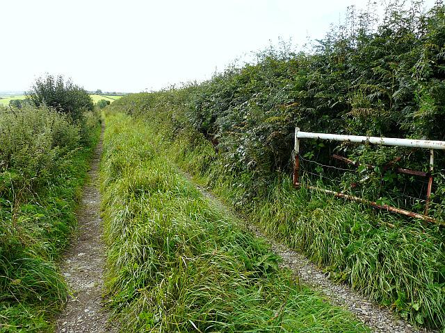 Farm track near Wrayside