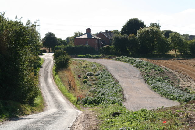 Newbald Lodge: and unusual road layout and a lot of borage growing