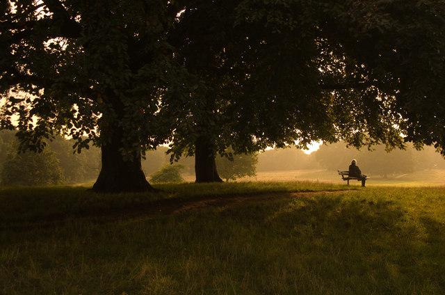 Contemplation, Hampstead Heath