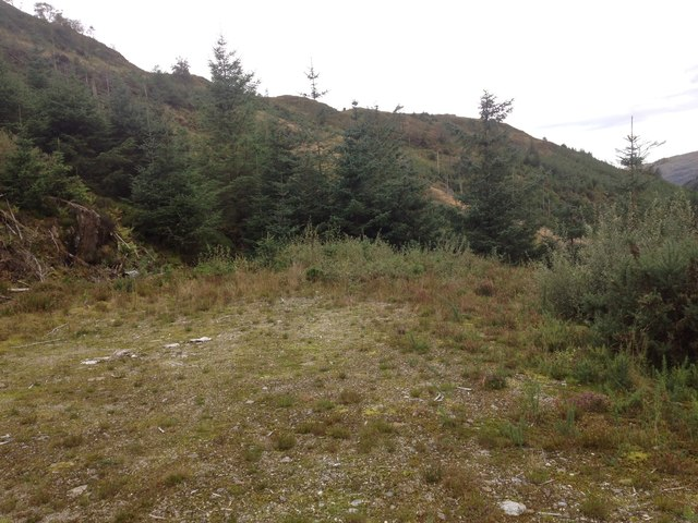 End of a forestry road in Glenhurich Forest